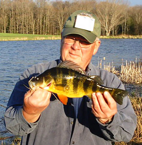 Yellow perch for Pa fish records