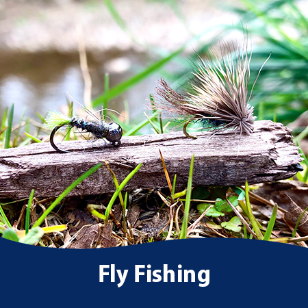 Fly Fishing photos